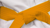 Oranje band Krav Maga Gidon systeem